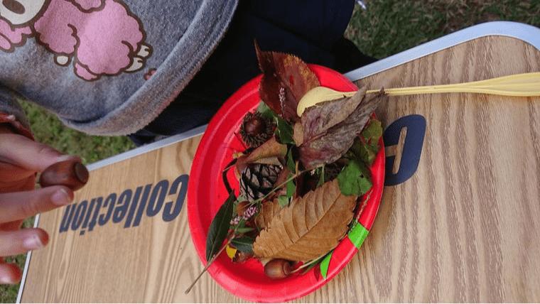 秋キャンプ 子供 遊び 木の実